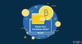 Kripto Para Cüzdanları Nedir?